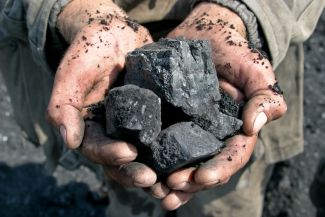Close-up of coal in the hands of a miner