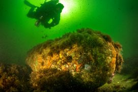 A research diver investigates old munition in the Baltic Sea